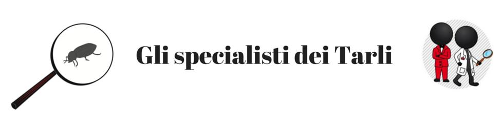 Gli specialisti dei tarli